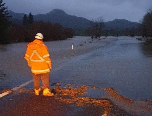 Coromandel Storm Damage Response